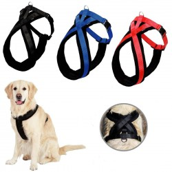 Harness for a large dog - comfortable