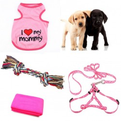 Pink layette for your puppy bitch