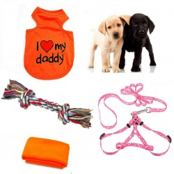 Layette for a puppy - the perfect gift