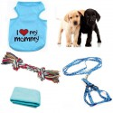 Blue layette for your puppy dog