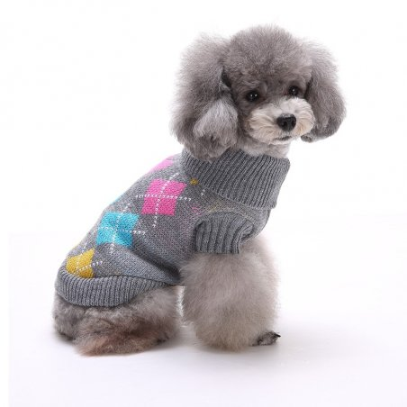 Dog jumper for a dog, cat