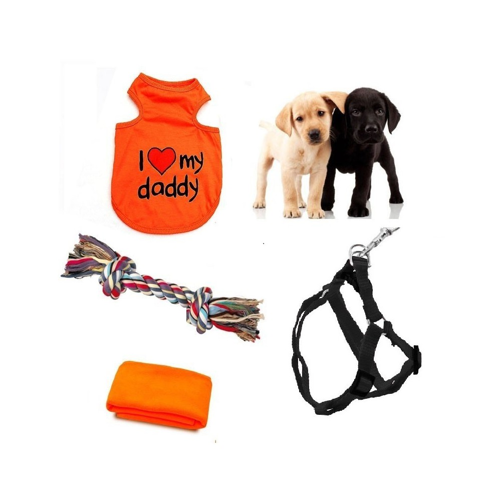Orange layette for your puppy