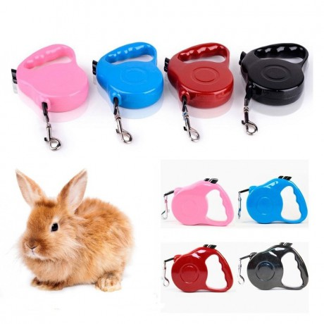 Automatic leash for rabbit, cat, dog