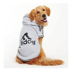 Szara bluza Adidog duża