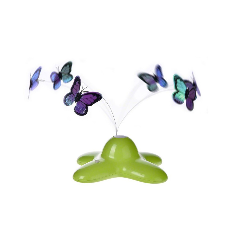 Funny butterfly dla kota