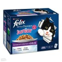 Felix Junior, 12 x 100 g