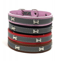 Reflective dog collar L