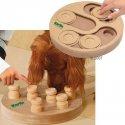 Zabawka edukacyjna Doggy Brain Train