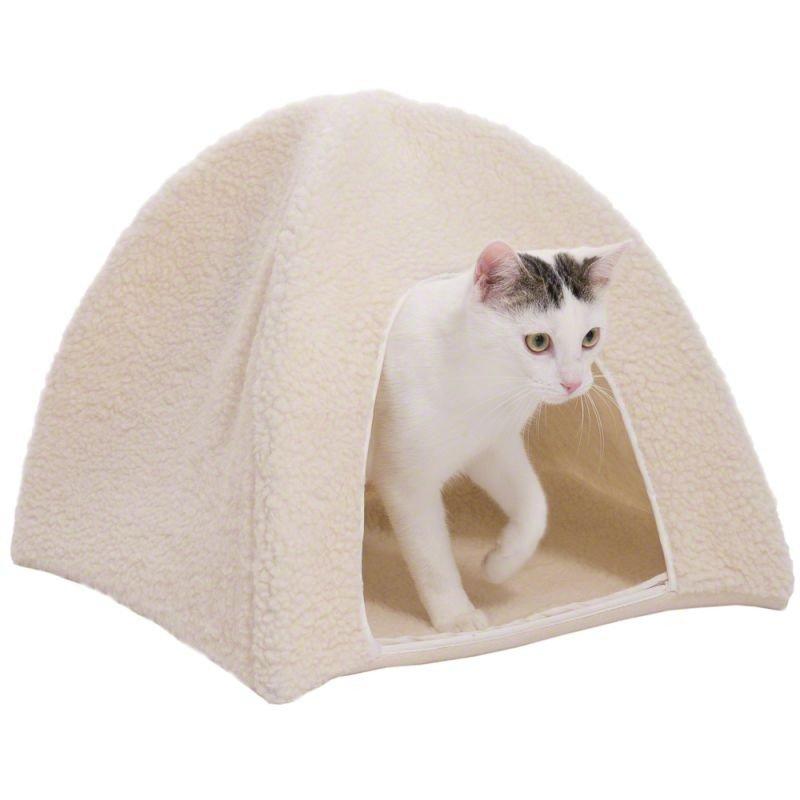 Tent, cabin, hut cat