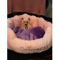 Legowisko dla psa,kota Princess z poduszką