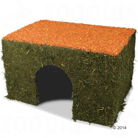 House, kennel for cat, dog - lair