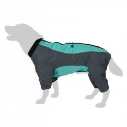 Winter Jacket for dog - Snowflake suit