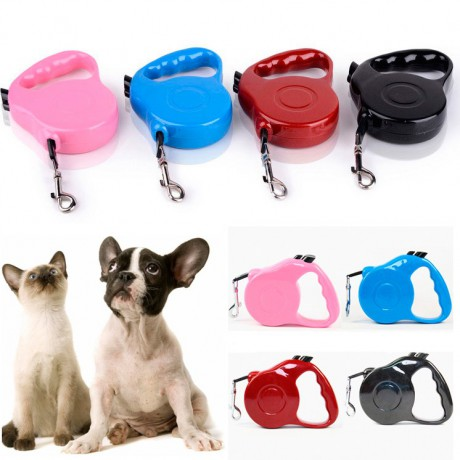 Automatic leash for dog, cat, rabbit