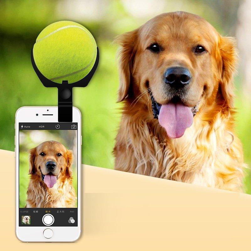 Selfie Stick dla psa