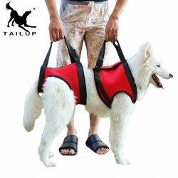 Uprząż rehabilitacyjna dla psa tył