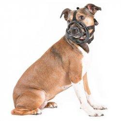 Kaganiec Fizjologiczny dla psa M
