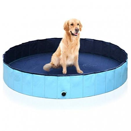 Swimming Dog, playpen in one