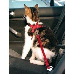 Szelki podróżne do samochodu dla kota