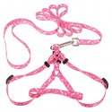 Comfortable harness for your dog, cat, rabbit - leash
