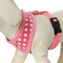 Harness for the average dog - pressure-L-XL